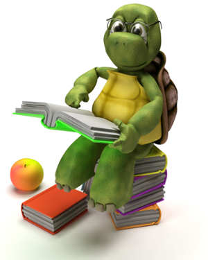 Turtle Reading Book